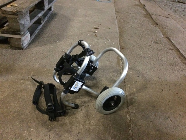 Een rolstoel voor Kika 62010