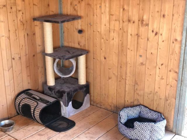 2 pallets voor Refugio la Candela 67271911