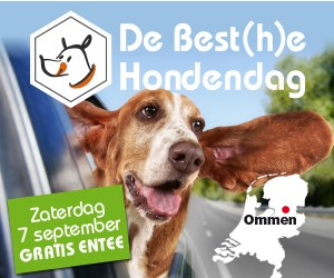 De Best(h)e Hondendag 2019 Banner11
