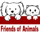 Friends of Animals Klien_10