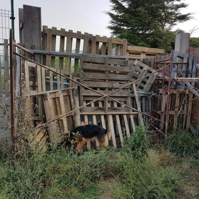 Een poort voor Aurora Zzzz10