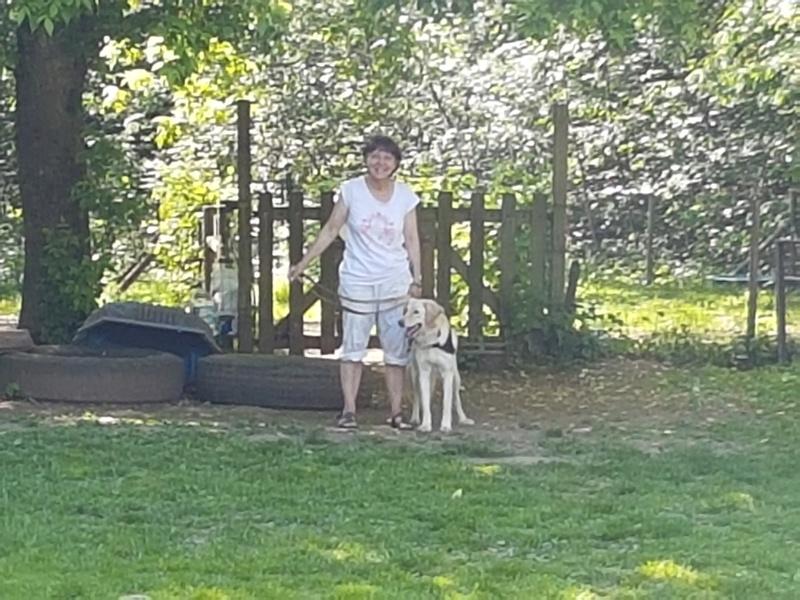 DINA, femelle, née septembre 2015 (Pascani) - adoptée par Jacqueline (Belgique) - Page 10 20170511