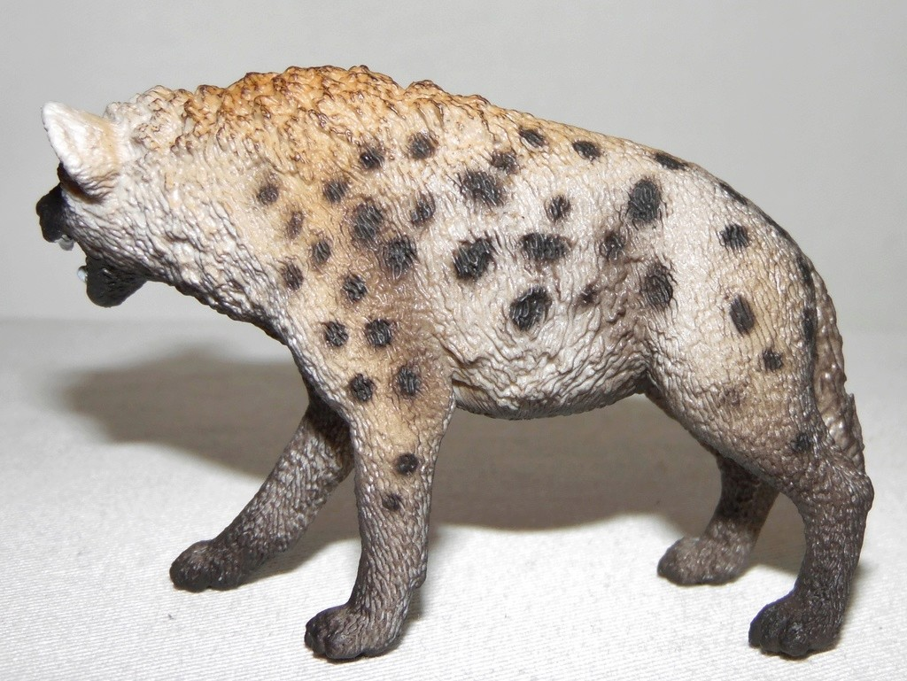Rebooted Schleich Wildlife Collection(2015-present) Sam_3615