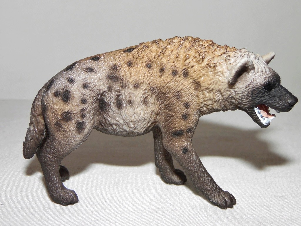 Rebooted Schleich Wildlife Collection(2015-present) Sam_3617