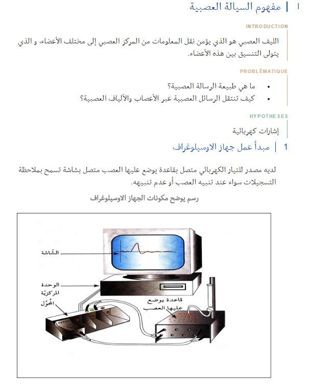 شرح مفصّل - مذكرة : وحدة العضوية - التحكم العصبي - مفهوم السيالة العصبية - السنة الاولى ثانوي علوم Bandi117