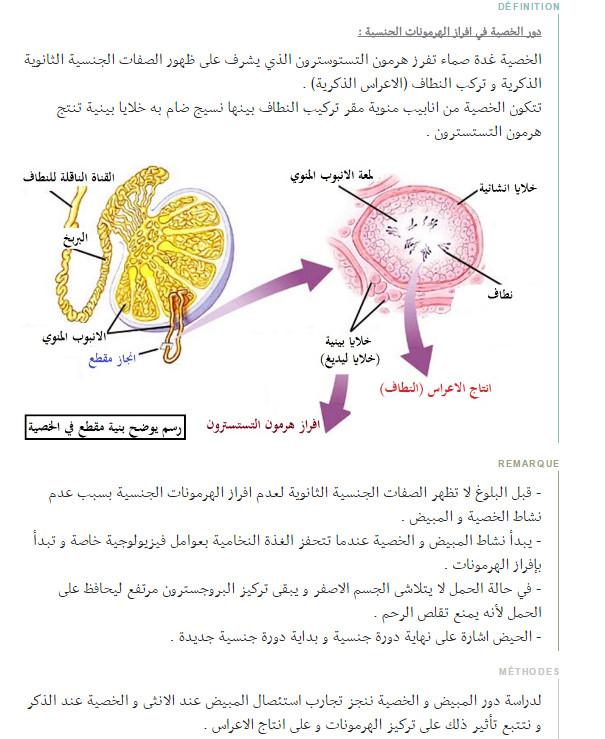 وحدة العضوية - التحكم الهرموني - مفهوم الهرمون و الغدة الصماء - علوم الطبيعة و الحياة - السنة الاولى ثانوي علوم Bandi130