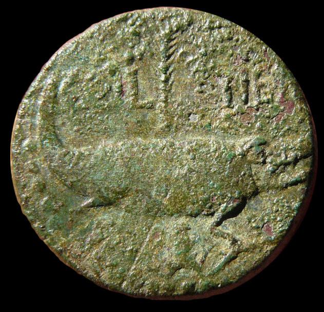 Recherche Dupondius de Nîmes Dupond13