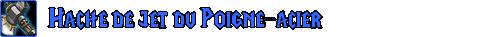 Equipement, gestion et boutique Hache_11