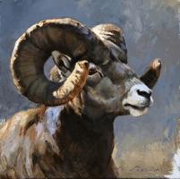 La faune de la vallée de Thrakan'raz Mouflo10