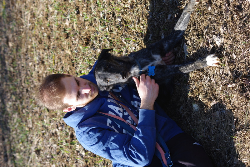 JAKE - chiot mâle né mars/avril 2016 - ( CARMINA BUCAREST ) - Adopté par Sarah et Kevin (départ 57) - Page 3 Imgp5623