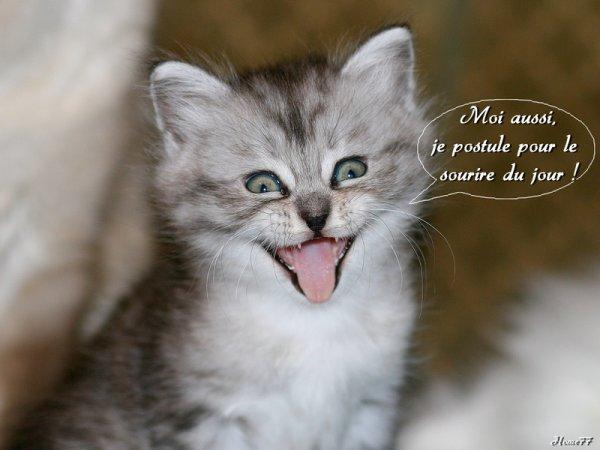 Un sourire par jour - Page 2 H94910