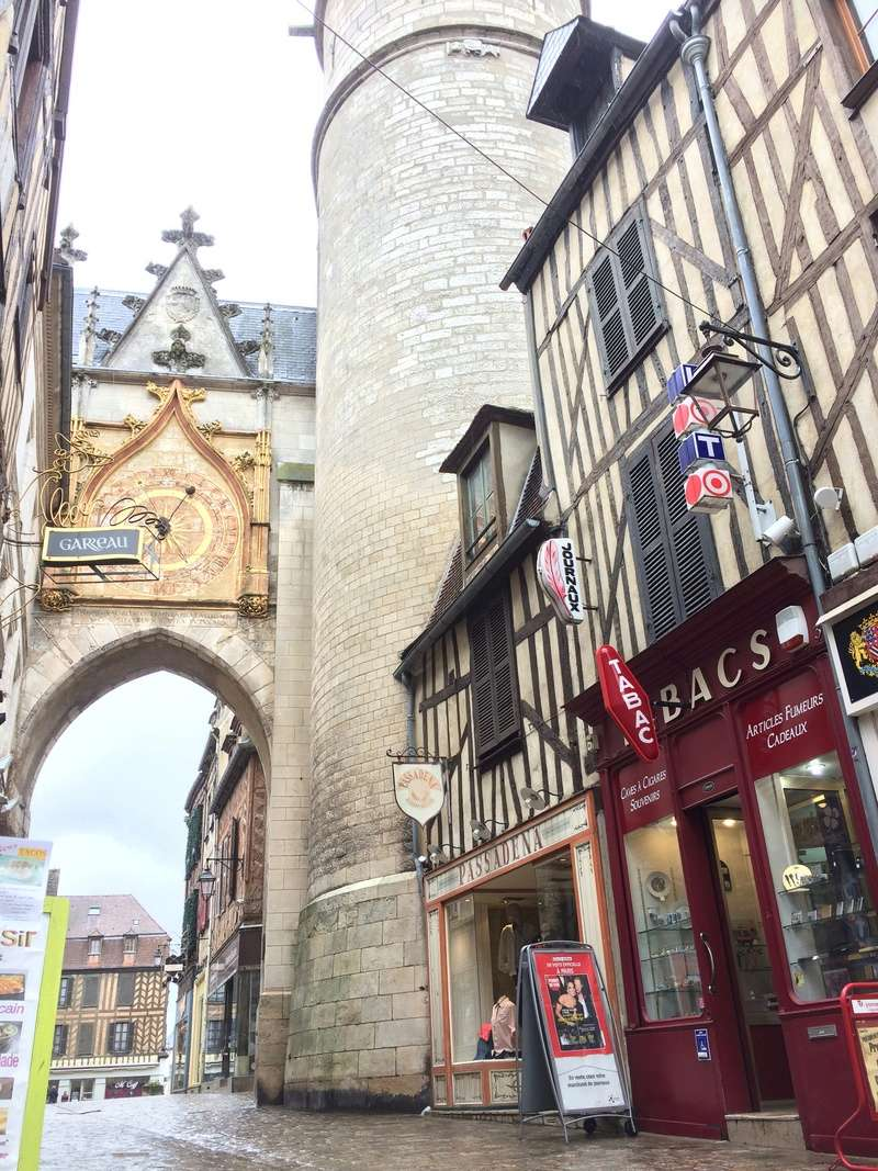 Civettes dans l'Yonne (89) Img_0253