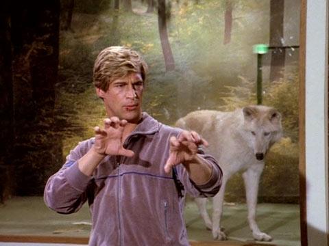 Loup, y es-tu ? Manima10
