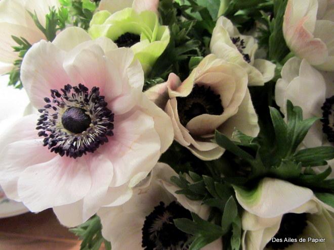 Fleurs de saison 06310