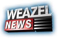 Weasel Flash Img_2225