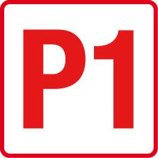 Endurance des 6H de SPA Francorchamps P110