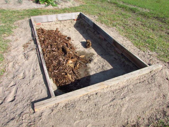 Outside Beetle Habitat: Outsid11