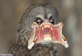 Which mutated animal or abomination you hate the most? - Page 3 Images10