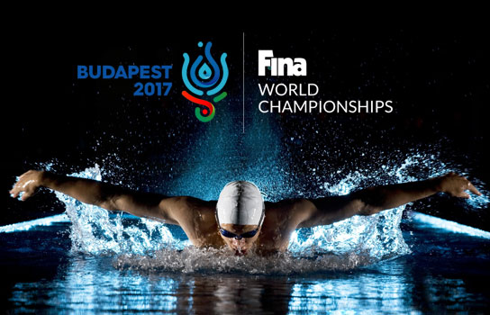 Nightcrawler's Journey to World Masters Swimming Championships 2017 Fina-s10