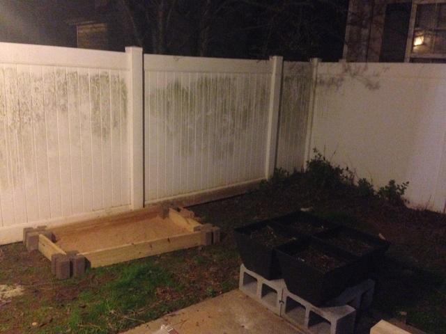 Update on Garden in Acworth GA Img_0214
