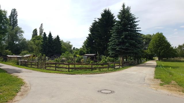 65239 Hochheim-Massenheim Rundweg Friedhof-Wicker-Hochheim Version 6,8 km.  20170646