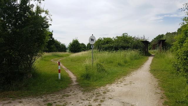 65239 Hochheim-Massenheim Rundweg Friedhof-Wicker-Hochheim Version 6,8 km.  20170649