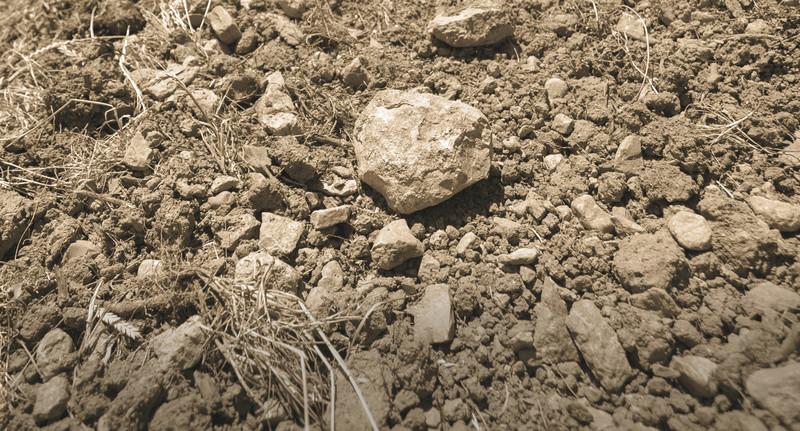 Substrat Sol-ma10