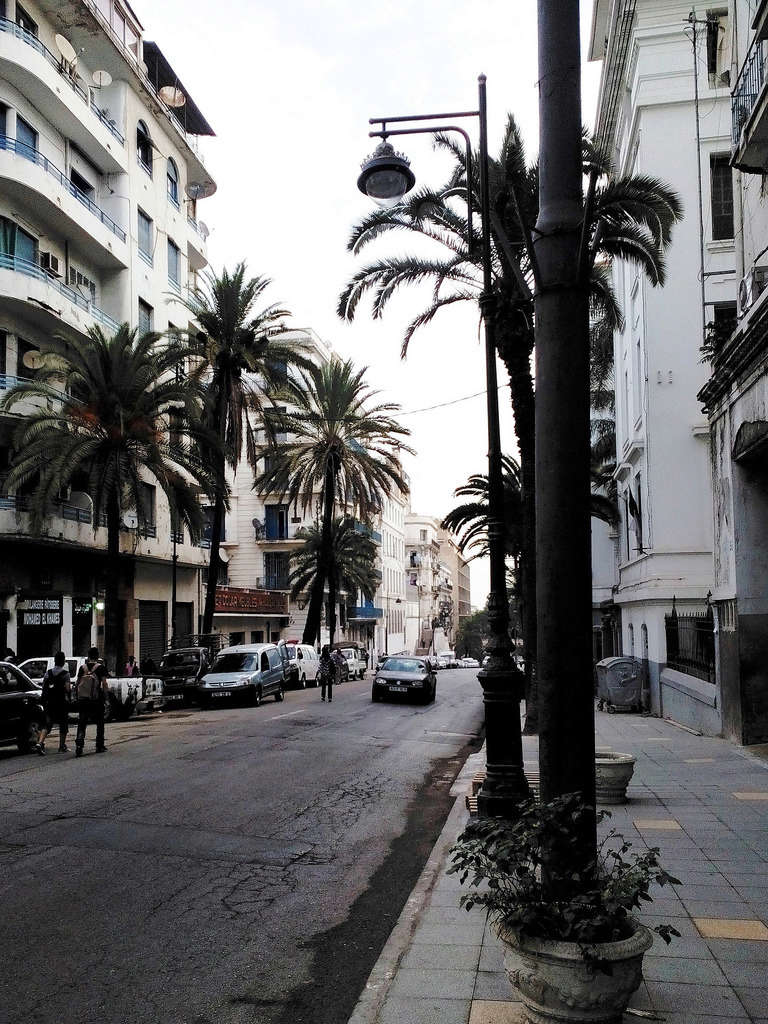 Algérie 15223210