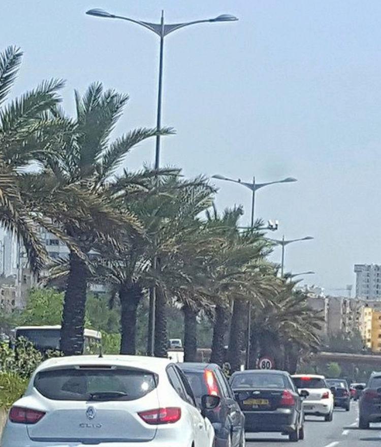 Algérie Img_4912