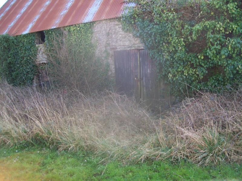sortie de grange photos 100_3515