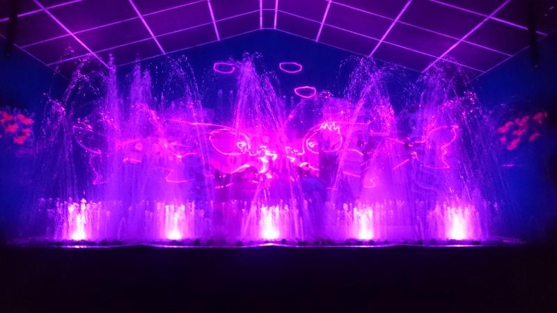Symphonie Aquatique Laser (2015) Dsc_0067