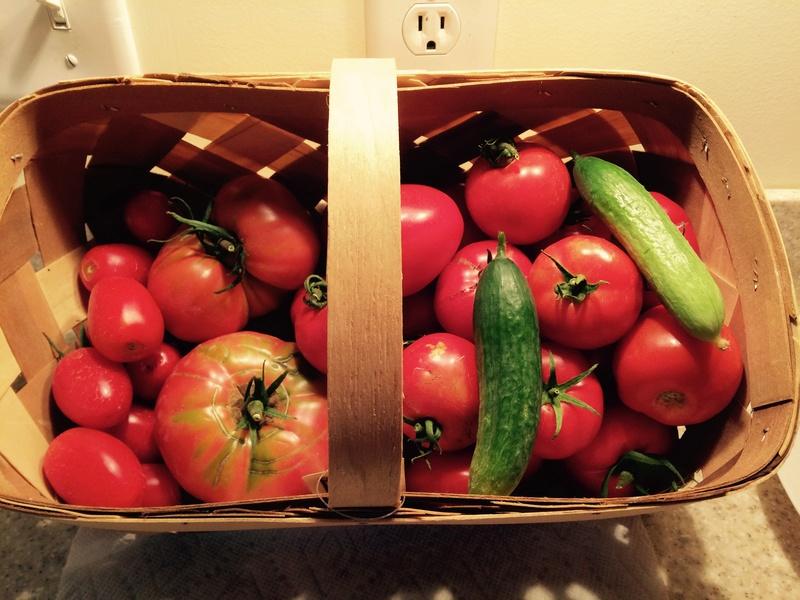 2017 SFG in Brooks, Ga - Page 5 Tomato23