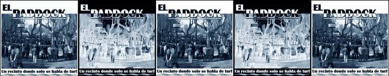 EL PADDOCK
