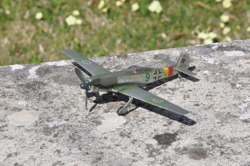 Focke Wulf Ta 152 H REVELL (ex. FROG) 1/72  Dsc_0215