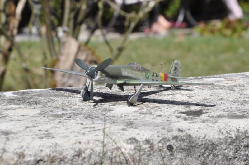 Focke Wulf Ta 152 H REVELL (ex. FROG) 1/72  Dsc_0216