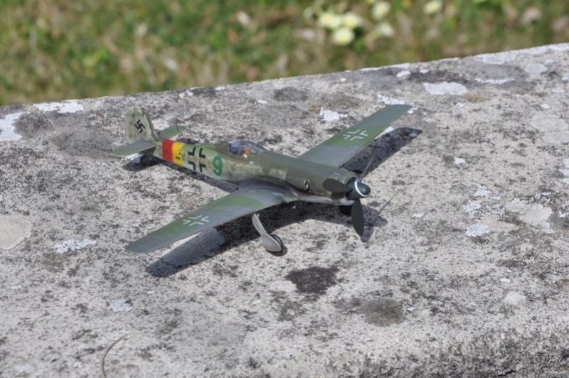 Focke Wulf Ta 152 H REVELL (ex. FROG) 1/72  Dsc_0219