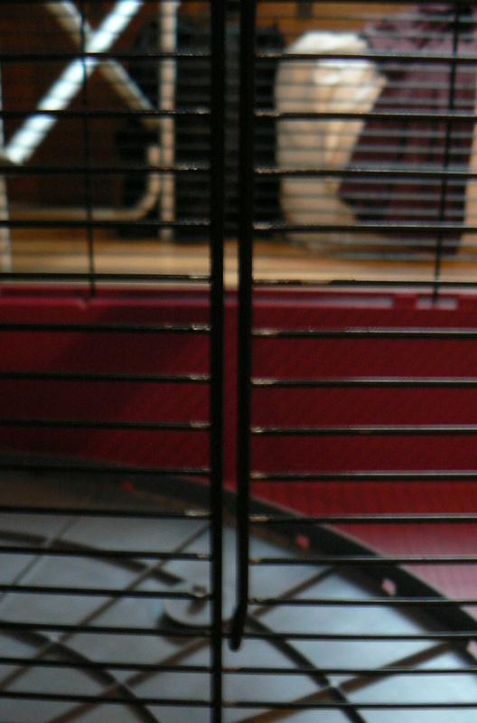 Rouille sur cage d'occasion P1000810