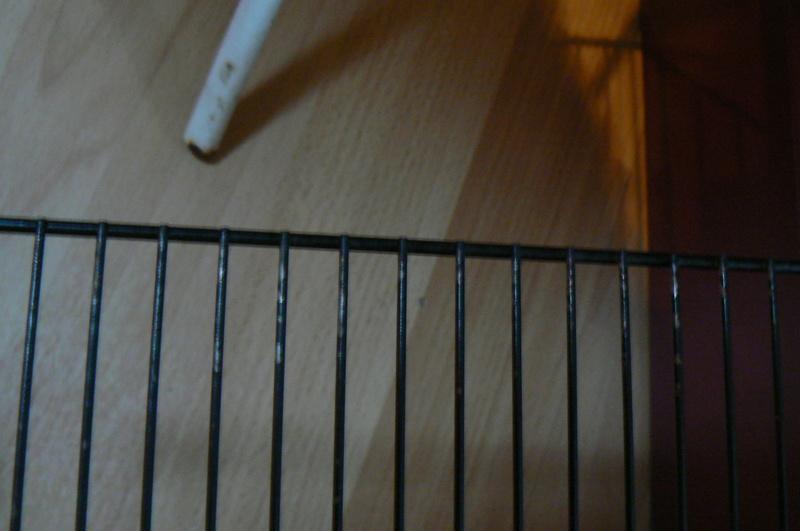 Rouille sur cage d'occasion P1000811