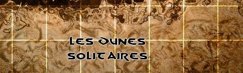 [CARTE] Les Dunes Solitaires Les_du10