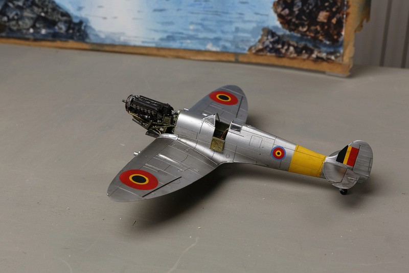 Spitfire MK IXc 1/48 Eduard ref 8281 _ano5311