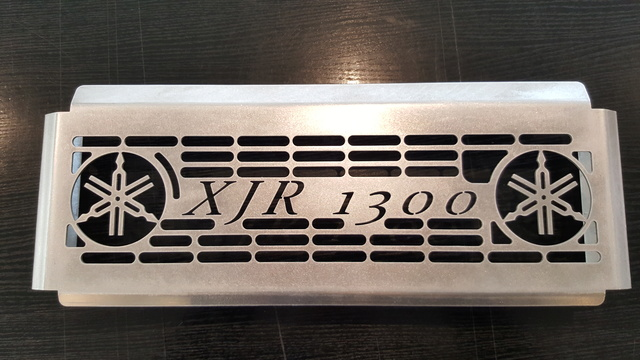 Grille de radiateur 20170311