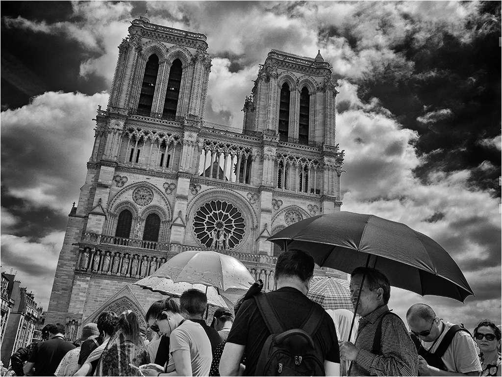 """"""" The lady of Paris ...."""" plus un ajout... _1050610"""