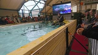 Salon de la pêche à Châteauroux  Dsc_0013