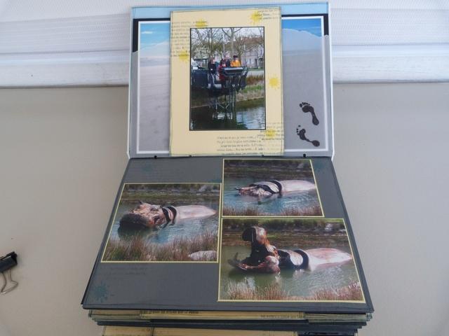 SB14 : L'album de Béa P1180916