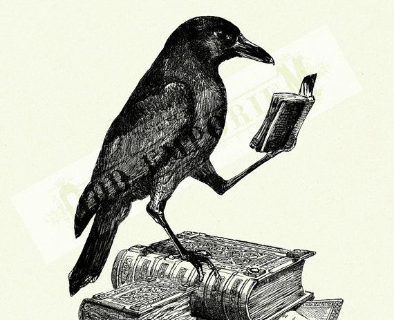 Le corbeau n'a pas une cervelle de moineau  Il_57010