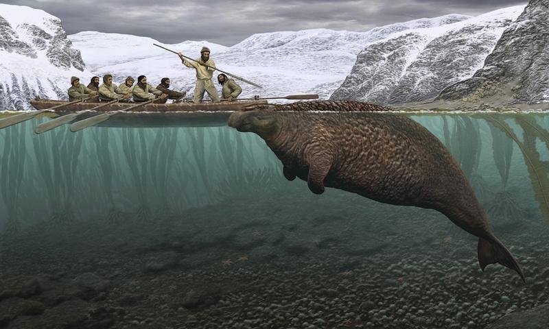 Les animaux disparus-espèces éteintes du fait de l'homme et son mode de vie Sea-co10