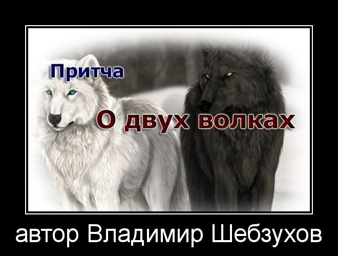 Притчи от Владимира Шебзухова - Страница 12 Iooi10