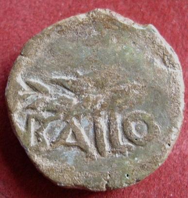 Unidad de BAILO Bailo_11