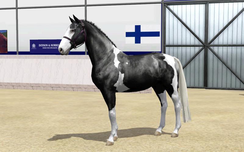 Регистрация лошадей в RHF 2 - Страница 5 111