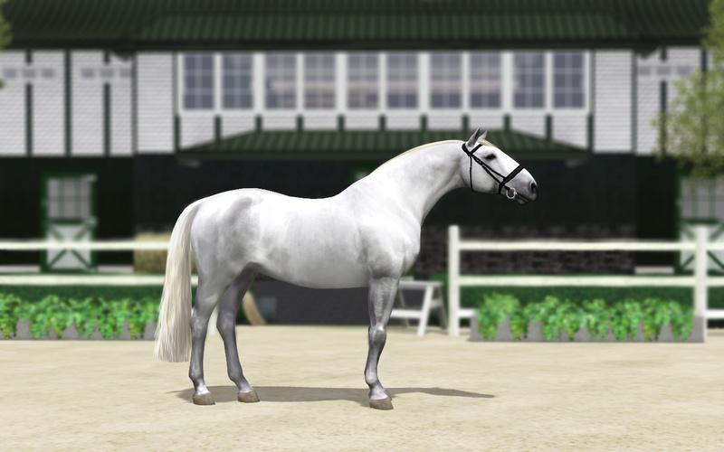 Регистрация лошадей в RHF 2 - Страница 5 Aa10
